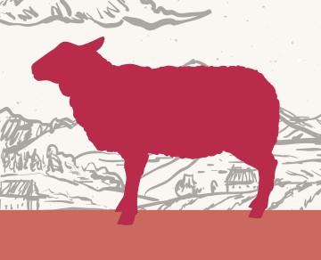 בשר כבש שוק על ירך בית קצבים בלוינסקי 65 תל אביב. כל הבשרים בחיתוך במקום, מהחווה אל האטליז.