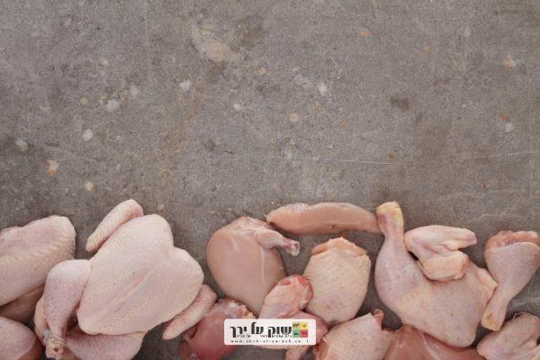 עוף שלם בקצביה בתל אביב - שוק על ירך